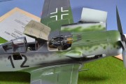 FW109 D-9 1/24 Trumpeter